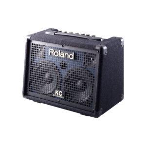 ROLAND KC110 артикул 211222